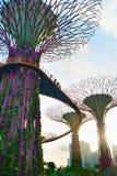 Sunny Gardens dalla baia Fotografia Stock