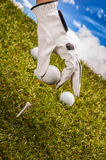 Sunny golf field with golf stuff Royalty Free Stock Photography