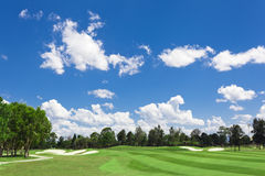 Sunny Golf Green royalty free stock images