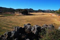 海峰湿地在曲靖,云南,中国,草地和岩石的小山 royalty free stock photo