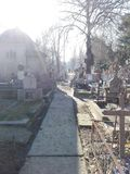 Sunny Graveyard immagini stock