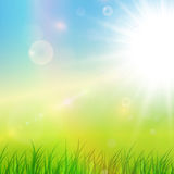 Sunny green background Royalty Free Stock Photos