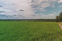 Sunny Green Field brillante colorido, carretera nacional, paisaje del verano del r?o con el cielo nublado azul, ?rboles y colinas imagenes de archivo