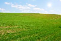Sunny green hill Stock Photography