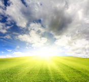 Sunny green hill with grass under sky Royalty Free Stock Images