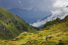 Sunny hillside amid fog and cloudy mountains Royalty Free Stock Photos