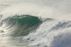 Sunny green wave with tube Stock Photography