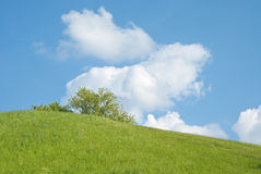 Sunny Hill Royalty Free Stock Photography