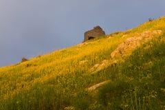 Sunny hill Stock Photography