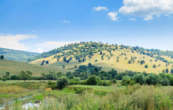 Sunny hillside Royalty Free Stock Photography
