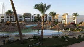 Sunny Hotel Resort met Blauwe Pool, Palmen en Sunbeds in Egypte Geschoten op Canon 5D Mark II met Eerste l-Lenzen stock videobeelden
