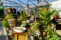Sunny hothouse in a little farm of plants Royalty Free Stock Image