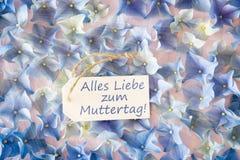 Sunny Hydrangea Flat Lay, Muttertag veut dire le jour de mères heureux Photos libres de droits