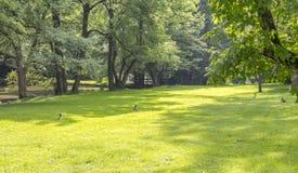 Idyllic park scenery Royalty Free Stock Images