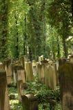 Sunny illuminated old graveyard in Berlin Stock Photos