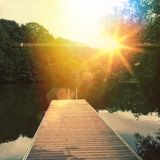 Sunny lake. In the forest Stock Images