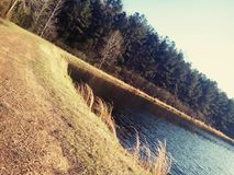 Sunny lake trail. Walking around the lake on a sunny day Royalty Free Stock Photography