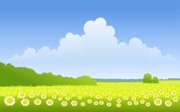 Sunny landscape Stock Images