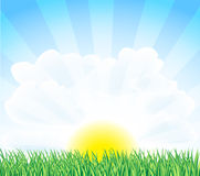 Sunny landscape. With green grass Royalty Free Stock Photos