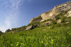 Sunny landscape Stock Images