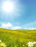 Sunny landscape Royalty Free Stock Images