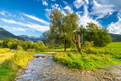 Sunny landscape with a creek flowing from mountains and blue sky stock photo