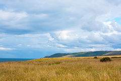 Sunny landscape with fields and blue sky in Scotland Royalty Free Stock Images