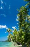 Sunny Landscape Royalty Free Stock Photo