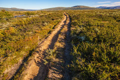 Sunny landscape Norway mountains Dovrefjell Stock Photos