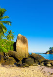 Sunny Landscape Stock Photo