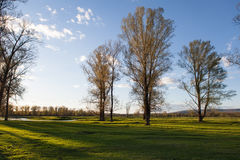 Sunny landscape of ural meadow stock images