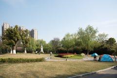 Sunny lawn Stock Photo