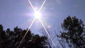 Sunny Lense Flare stock footage
