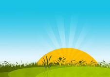 Sunny Meadow. Illustrated meadow with sun and sky Stock Images
