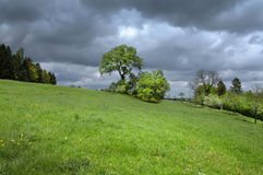 Sunny meadow with dark thunderclouds Stock Images