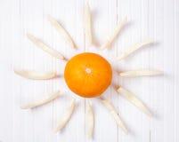 Sunny melon Stock Photos
