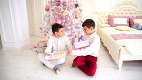 Sunny morning after Christmas and exchange of presents by siblings sitting on floor in bedroom with Christmas tree. Children, brothers, twins hold in their stock footage