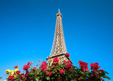Sunny morning and Eiffel Tower, Paris Royalty Free Stock Image
