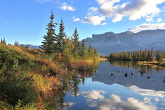 Sunny morning in Jasper National Park, Canada Stock Photos