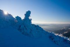 Sunny morning on a mountain ridge Royalty Free Stock Photos