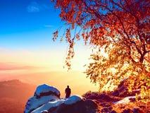 Sunny morning. Photographer preparing camera on tripod. Royalty Free Stock Photography