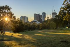 Sunny morning with sunshine thorugh the trees in a park with city buildings in the distance stock images