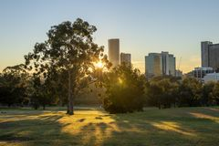Sunny morning with sunshine thorugh the trees in a park with city buildings in the distance stock image