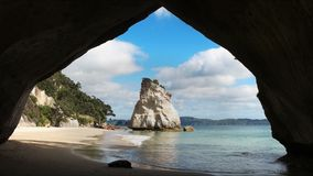 Morning view of cathedral cove in new zealand. Sunny morning view of cathedral cove on the north island of new zealand stock video