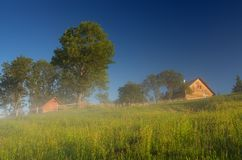 Sunny morning in the village Royalty Free Stock Image