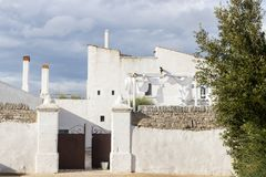 Wedding day in Puglia. A sunny morning for a wedding in Puglia, southern Italy. Event celebrated in a Masseria, a rustic farm surrounded by greenery stock image