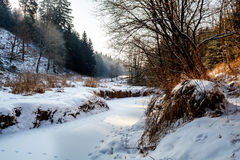 Sunny morning in winter landscape Royalty Free Stock Images