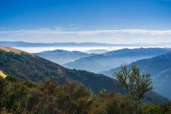 Free Sunny Morning With Lingering Fog; Santa Cruz Mountains, San Francisco Bay Area Royalty Free Stock Photography - 125052097