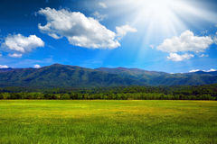 Sunny mountain meadow. Green lush meadow in the mountains with sun rays Royalty Free Stock Photography
