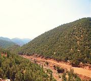 Sunny mountain Stock Photography
